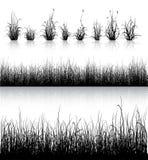 Grassilhouet op wit Royalty-vrije Stock Afbeeldingen