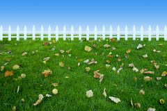 Grassland leaf fence Royalty Free Stock Photos