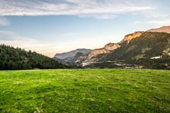 grassland fotos de stock royalty free