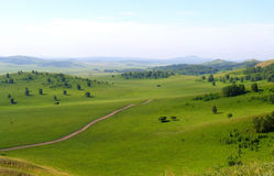 Grassland royalty free stock photography