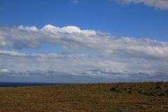 grassland obraz stock