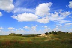grassland Fotografia de Stock