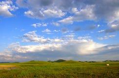Grassland Stock Photo