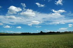 Grassland. Beautiful under the blue sky and white cloud Stock Photos