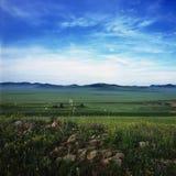 Grassland. A very beautiful grassland named Bashang Stock Images