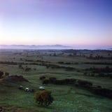 Grassland. Sun rise on  grassland , Bashang Stock Images