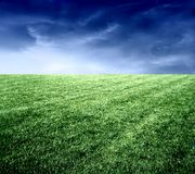 Grassland 7. A grassland in the night Royalty Free Stock Image