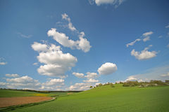 Grassland. Hills and grassland Royalty Free Stock Photography