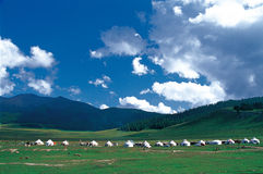 Grassland. Mongolian grasslands Shangyi Pai constitute a straight line, the transfer of heaven and earth and the sky of white clouds that seemed to reach close Royalty Free Stock Image
