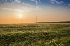 grassland Fotografia Royalty Free