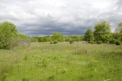 Free Grassland Royalty Free Stock Photography - 92840877