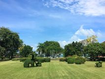 Grassland with animal shaped bush. With blue skies and clouds as background. Photo taken a resort in Thailand Stock Image