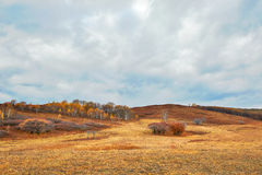 The grassland autumn and cloudscape Royalty Free Stock Photo