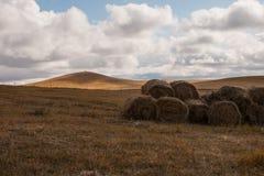 Grassland autumn scenery in China. The hulunbuir prairie autumn scenery of China Stock Photo