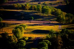Grassland. In autumn at sunset Royalty Free Stock Photos