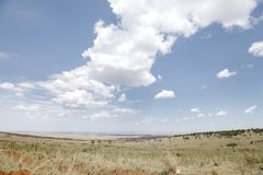 The grassland and beautiful cloud of Masai Mara National Park Royalty Free Stock Images