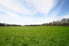 Grassland  and blue sky Royalty Free Stock Photos