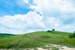 Grassland with blue sky and white clouds Stock Images