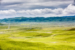 Grassland and clouds Stock Photography