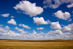 Grassland and cloudscape Stock Photography