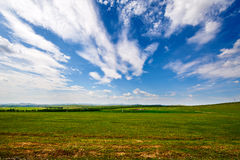 The grassland and cloudscape Stock Photo