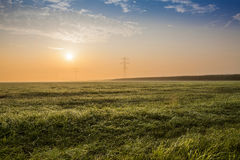 Grassland royalty free stock photography