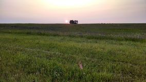Grassland, Ecosystem, Prairie, Field stock photography