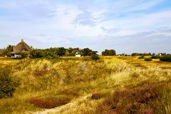 Grassland, Ecosystem, Prairie, Sky royalty free stock photography
