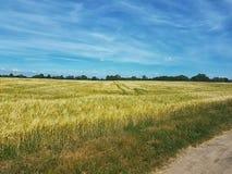 Grassland, Ecosystem, Prairie, Sky stock photo