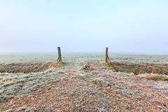 Grassland entrance on a cold winter day misty morning Stock Image