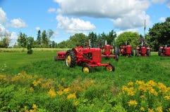 Grassland, Field, Agriculture, Farm stock image