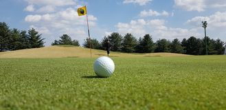 Grassland, Field, Grass, Golf royalty free stock images
