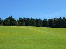 Grassland, Field, Pasture, Sky stock photography