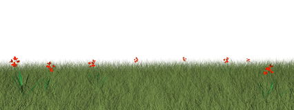 Grassland with flowers - 3D render Royalty Free Stock Photo