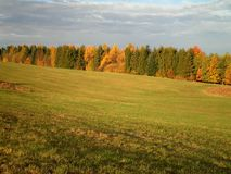 Grassland in Germany. A beautiful grassland during fall in Germany stock photos