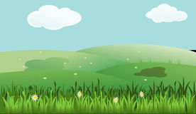 Grassland, Green, Ecosystem, Nature stock images