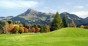 Grassland and green mountains at Kitzbuhel - Austr Royalty Free Stock Photo