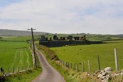 Grassland, Highland, Pasture, Sky