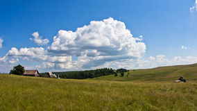 Grassland hills landscape at sunny summer day Royalty Free Stock Photo