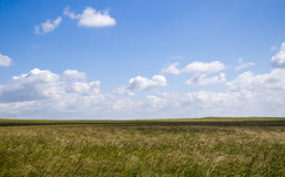 Grassland of Inner Mongolia. Beautiful and great meadow in Inner Mongolia, with white cloud in the sky and shadow on the land Royalty Free Stock Photos