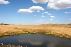 Grassland and lake. Beautiful nature is our precious property Stock Image