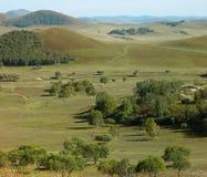 Grassland landscape Royalty Free Stock Photo