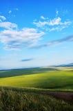 Grassland landscape stock photography