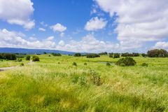 Grassland landscape in Bedwell Bayfront Royalty Free Stock Photography