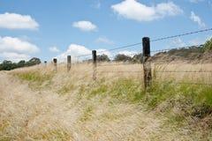 Grassland Landscape near Tentafield Royalty Free Stock Image
