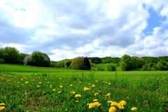 Grassland, Meadow, Sky, Field Royalty Free Stock Image