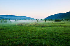 The grassland morning Royalty Free Stock Images