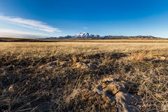 Grassland with mountain background. This photo was taken in the West Desert of Utah near the Simpson Spring Pony Express Station Royalty Free Stock Images