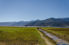 Grassland with mountain background Royalty Free Stock Images