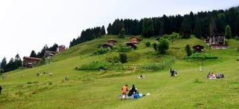 Grassland, Mountainous Landforms, Nature, Mountain Range royalty free stock images